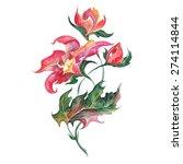 vector red decorative flower  ... | Shutterstock .eps vector #274114844