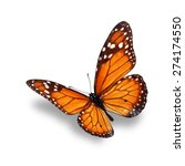 Stock photo orange monarch butterfly isolated on white background 274174550