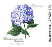 watercolor vector blue ... | Shutterstock .eps vector #274204370