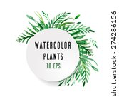 cover with watercolor plants  | Shutterstock .eps vector #274286156