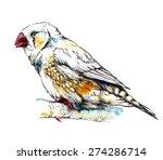 zebra finch bird sitting on the ...   Shutterstock .eps vector #274286714