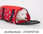 Red Bag For Transporting Pets...