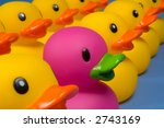 Purple Rubber Duck Surrounded...