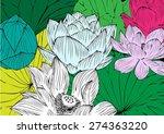vector lotus flower drawings...
