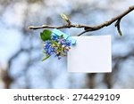 empty note pin with forget me... | Shutterstock . vector #274429109