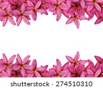 plumeria flower background. | Shutterstock . vector #274510310