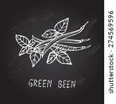 hand drawn decorative green... | Shutterstock .eps vector #274569596