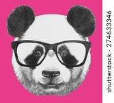 hand drawn portrait of panda... | Shutterstock .eps vector #274633346