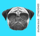 Hand Drawn Portrait Of  Pug Do...