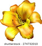 Stock vector lily flower isolated on white background vector illustration 274732010