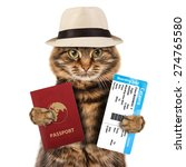funny cat with passport and... | Shutterstock . vector #274765580