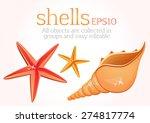 seashells  starfish  sea... | Shutterstock .eps vector #274817774