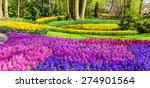 Amazing Floral Park Keukenhof...