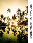 silhouette of coconut tree at... | Shutterstock . vector #274992908