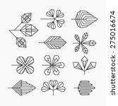 Hipster Geometrical Leaves  Se...