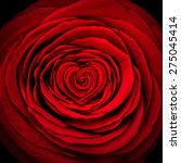 love rose concept as a red... | Shutterstock . vector #275045414