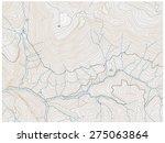 topographic map | Shutterstock .eps vector #275063864
