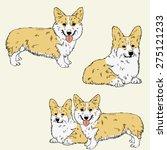 hand drawn sketches of corgi...   Shutterstock .eps vector #275121233