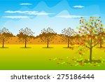 autumn landscape background... | Shutterstock .eps vector #275186444