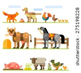Domestic Animals. Farm. Stock...