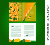 abstract vector brochure with... | Shutterstock .eps vector #275253434