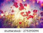 poppy | Shutterstock . vector #275293094