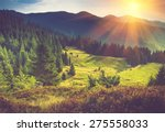 mountain forest landscape under ... | Shutterstock . vector #275558033