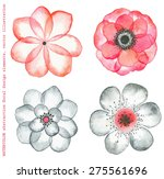 collection watercolor flowers...