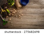 plants for planting and garden... | Shutterstock . vector #275682698