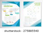 vector brochure flyer design... | Shutterstock .eps vector #275885540