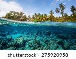 Underwater Split Shot Of The...