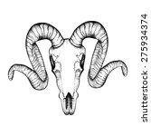 Hand Drawn  Goat Skull Doodle...
