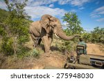 safari in mkzuze falls | Shutterstock . vector #275948030