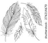 peerless decorative feather ... | Shutterstock . vector #276214670