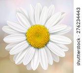 square head on shot of white... | Shutterstock .eps vector #276234443