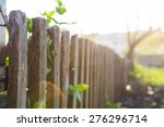 Rural Fence In The Sunlight