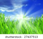 nice bright green grass and... | Shutterstock . vector #27637513