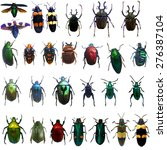 collection of jewelry beetle... | Shutterstock . vector #276387104