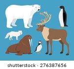 set of arctic animals  | Shutterstock .eps vector #276387656