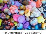 Closeup Of Colorful Sea Shell...