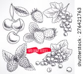 set with different ripe berries ...   Shutterstock .eps vector #276421763
