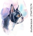 Watercolor Dog Boston Terrier...