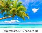 dream scene. beautiful palm... | Shutterstock . vector #276637640