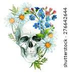 Watercolor Human Skull In...