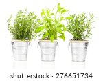 sage  thyme and rosemary herb... | Shutterstock . vector #276651734