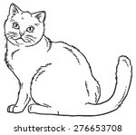 vector outline sketch if a cat... | Shutterstock .eps vector #276653708