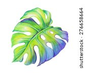 Abstract Tropical Monstera...
