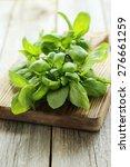 basil leaves on grey wooden... | Shutterstock . vector #276661259