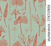 hand drawn herbarium elements...   Shutterstock .eps vector #276715856