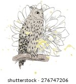 vector sketch of a owl with... | Shutterstock .eps vector #276747206